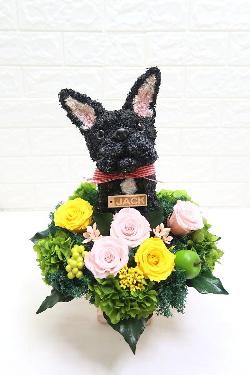 ペットのお供え花 フレンチブルドッグ