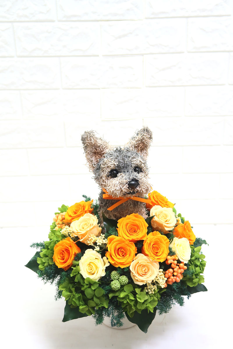犬花アレンジ ヨークシャテリア