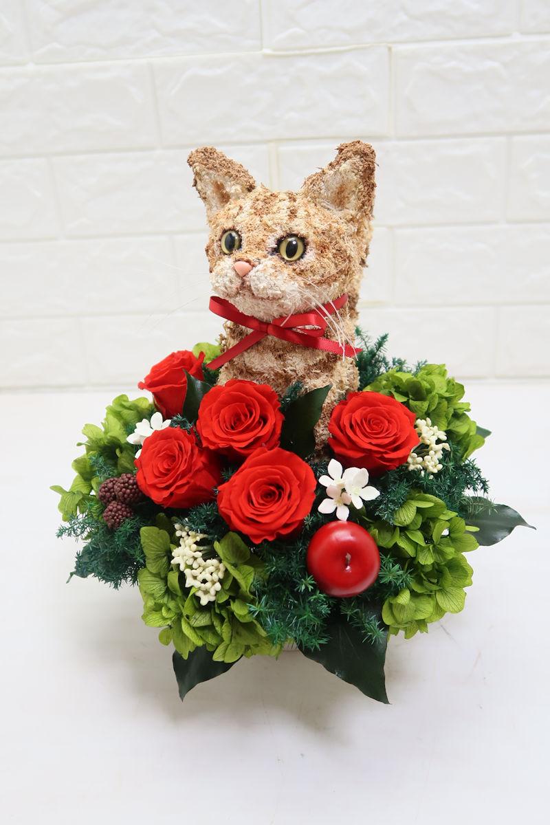 猫好きが喜ぶプレゼント