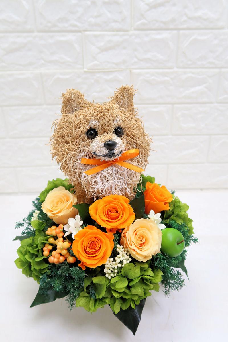 犬花アレンジ
