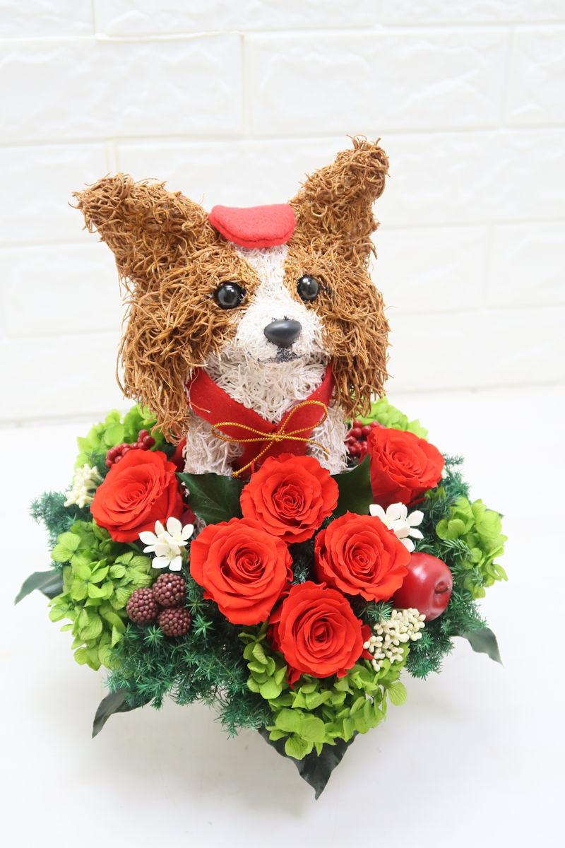 愛犬家還暦祝い パピヨン