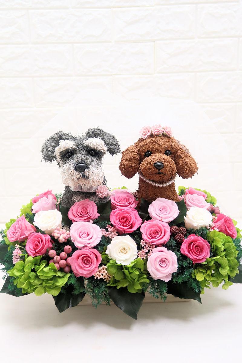 愛犬家 結婚祝い