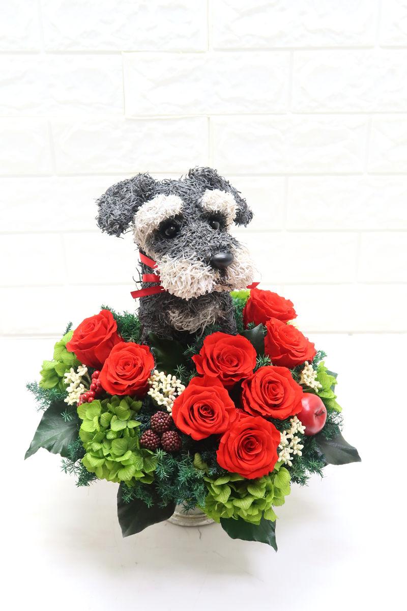 ペットサロン開店祝いの花