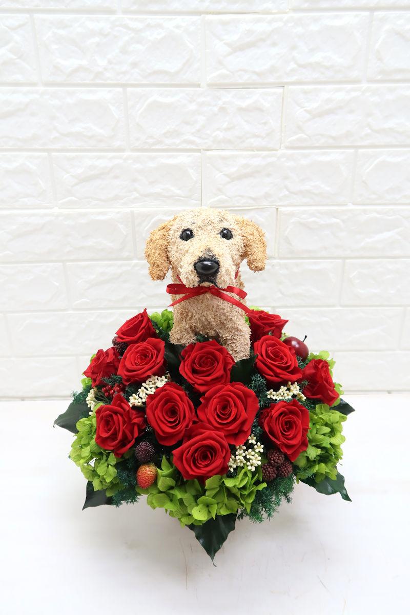 犬好き誕生日ぷれ