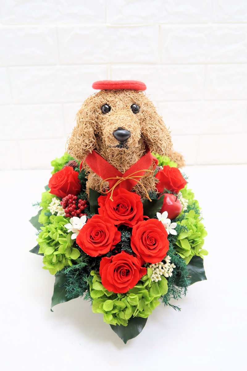 還暦祝い 犬好き