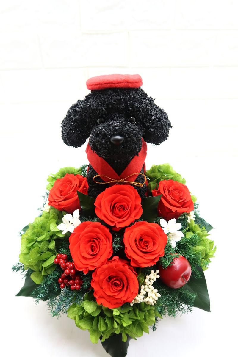 還暦祝い犬好き