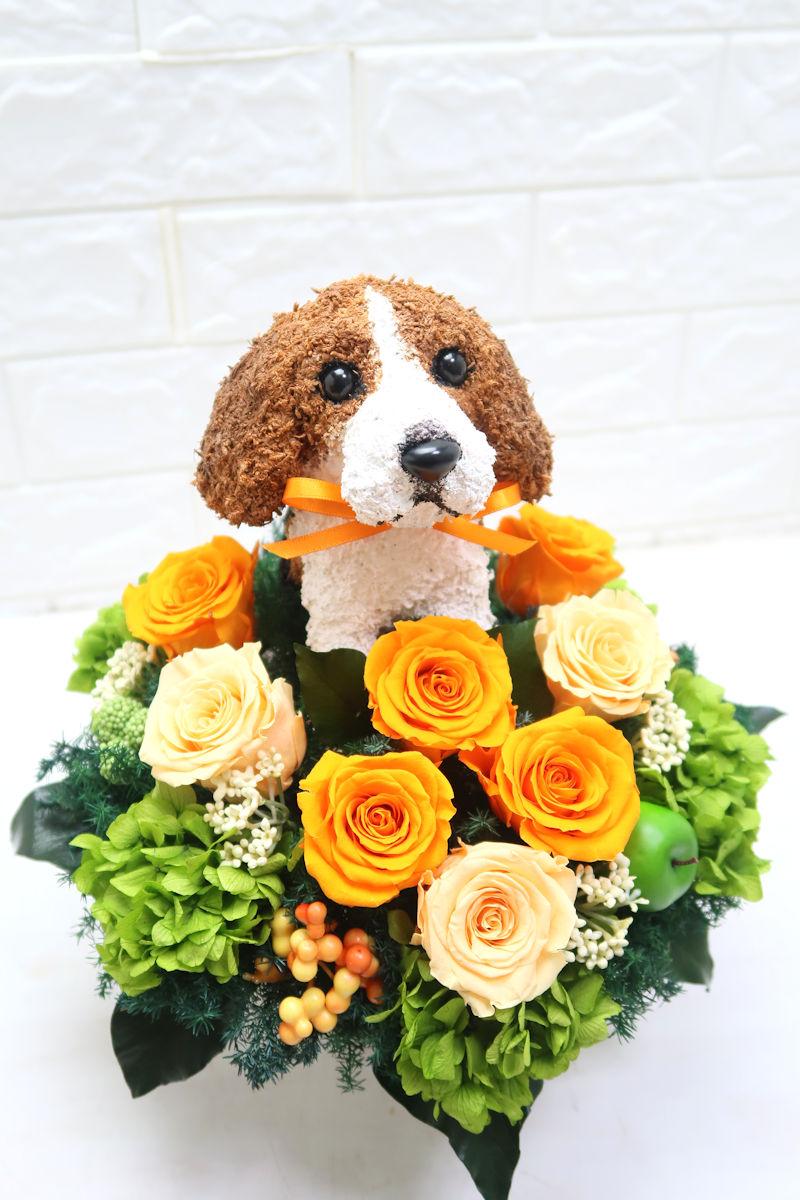 プリザーブドフラワー犬 ビーグル犬