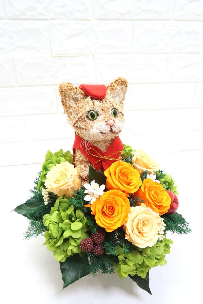 還暦祝い猫好き