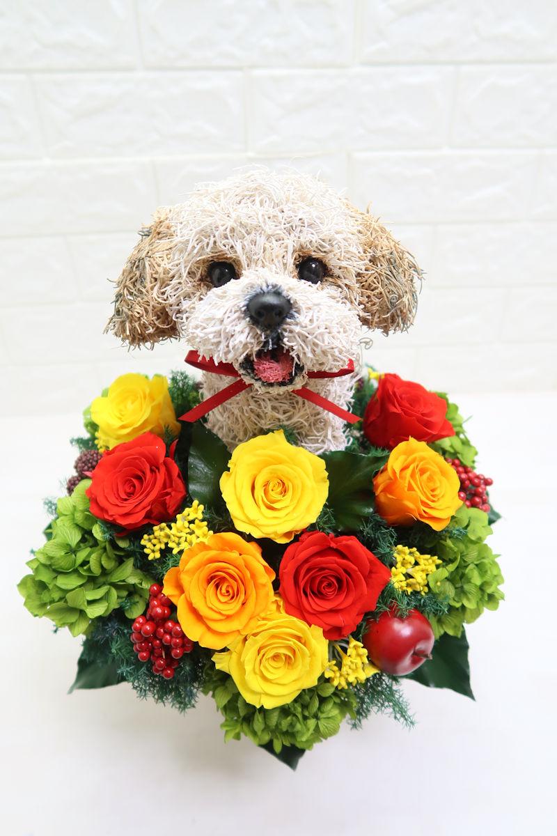 還暦祝い 愛犬オーダーメイド