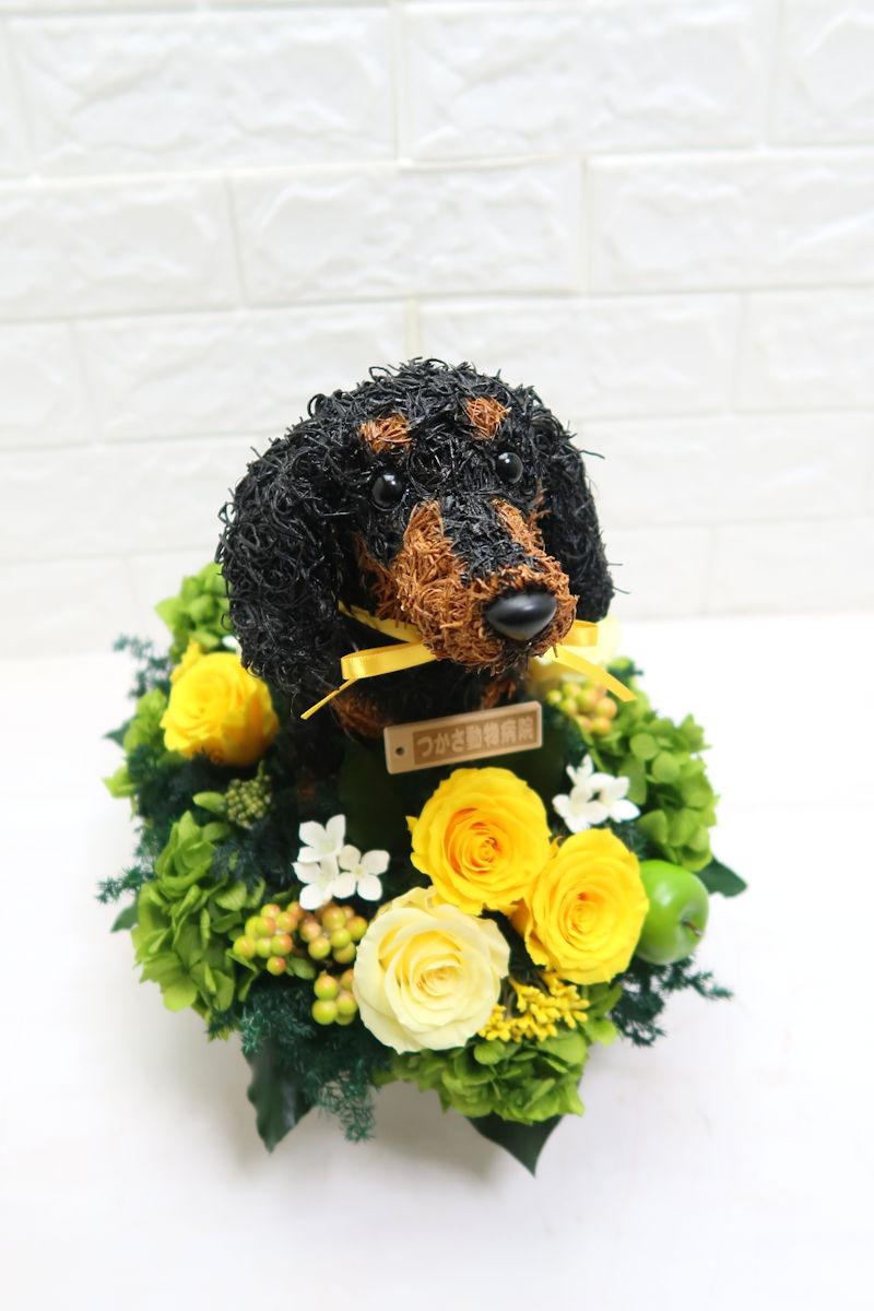 動物病院開院祝い 花