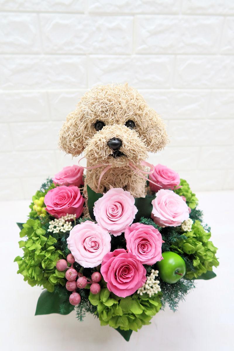 トイプードル 花