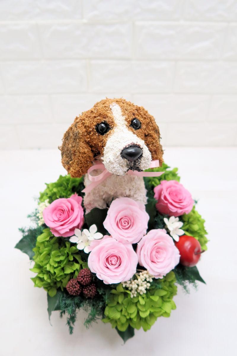 結婚式両親プレゼント 犬好き