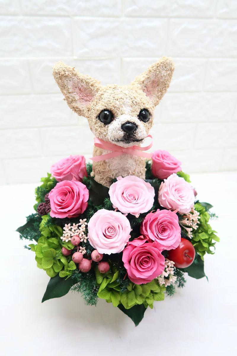 結婚祝い チワワ